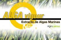 ALGA-vigour
