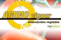 AMINO-vigour
