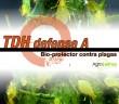 TDH-defense-A
