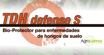 TDH-defense-S